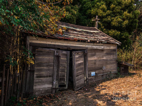 Old Abandoned Shed Sonoma County Art Print
