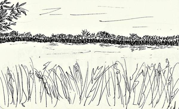 Drawing - Old Arm Of The River Elbe by Chani Demuijlder