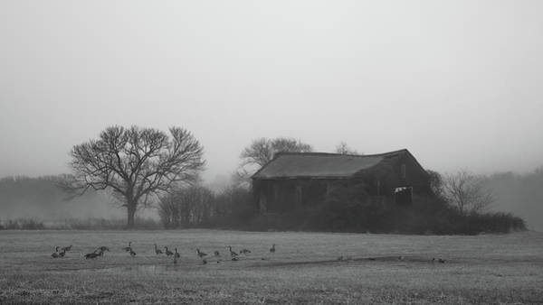 Photograph - Old Barn In Fog - Black And White by Kirkodd Photography Of New England