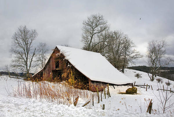Photograph - Old Barn In Snow by Ken Barrett