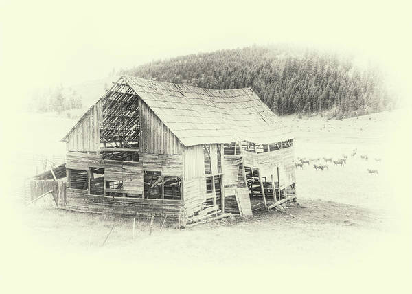 Photograph - Old Barn Near Wauconda by Doug Matthews