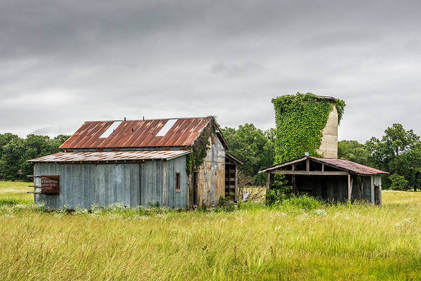 Wall Art - Photograph - Old Barn With Vine Covered Silo by Paul Freidlund