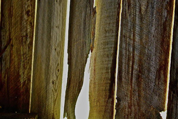 Photograph - Old Barn Wood by Diana Hatcher