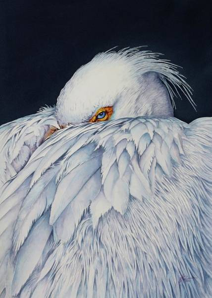 Painting - Old Blue Eyes by Greg and Linda Halom