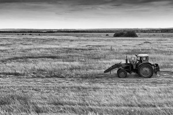Photograph - Old Blue Tractor by John Williams