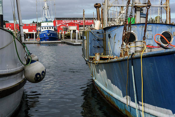 Photograph - Old Boats by Robert Potts