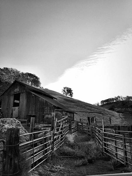 Photograph - Old Borges Ranch by Brad Hodges