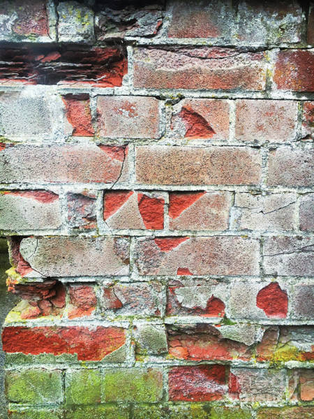 Wall Art - Photograph - Old Brick Wall by Tom Gowanlock