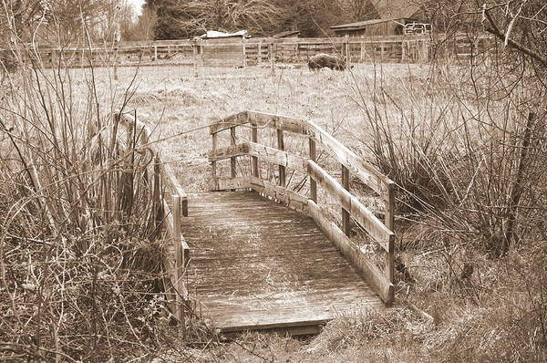 Photograph - Old Bridge by Buddy Scott