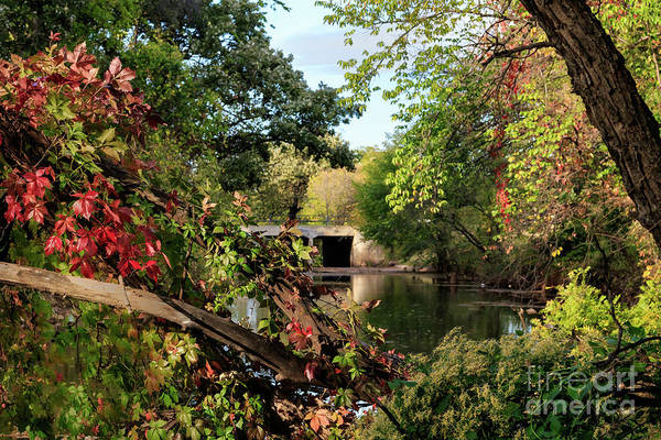 Photograph - Old Bridge In The Fall by Richard Smith