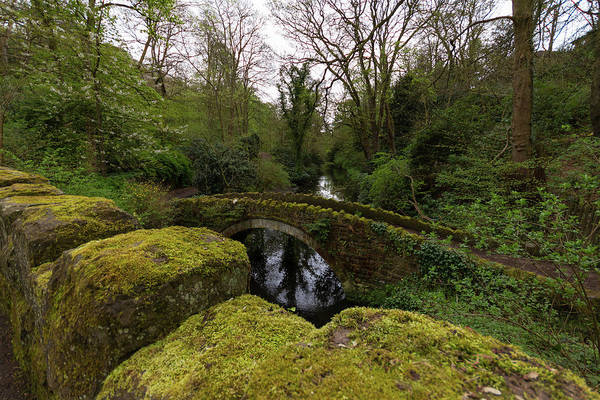 Stone Wall Art - Photograph - Old Bridge In The Park by Iordanis Pallikaras