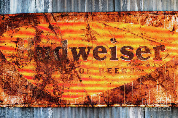 Photograph - Old Budweiser Sign by M G Whittingham