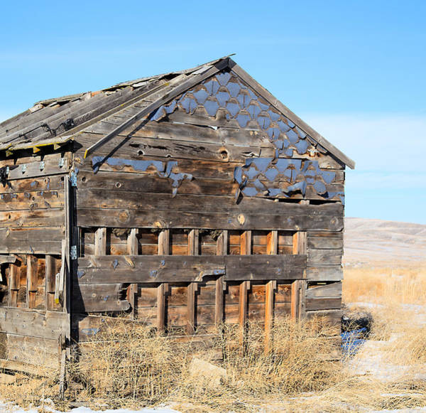 Photograph - Old Cabin In The Desert by Dart Humeston