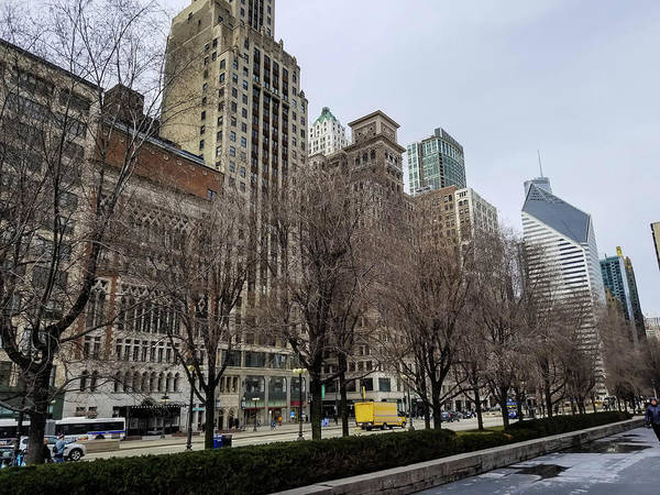 Millennium Park Photograph - Old Chicago Skyscrapers by Britten Adams