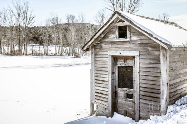 Photograph - Old Chicken Coop In Winter by Edward Fielding