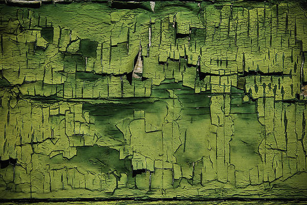 Disintegrate Photograph - Old Cracked Green Paint by Garry Gay