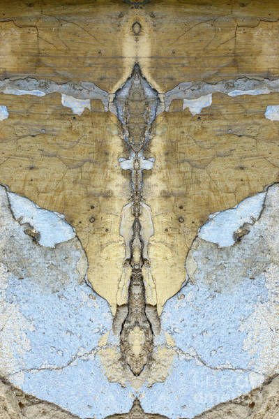Wall Art - Photograph - Old Damaged Plaster With Cracked Paint by Michal Boubin