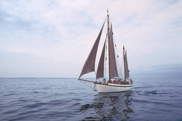 Photograph - Old Wooden Sailboat by Kim Lessel