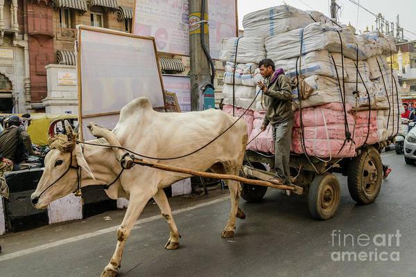 Photograph - Old Delhi From A Rickshaw 07 by Werner Padarin