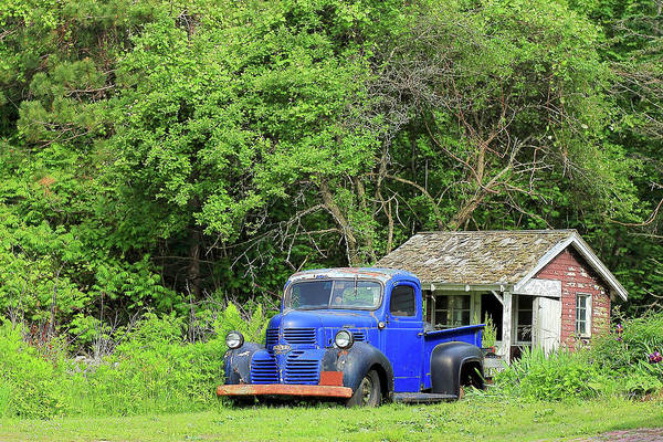 Photograph - Old Dodge Truck by Brian Pflanz