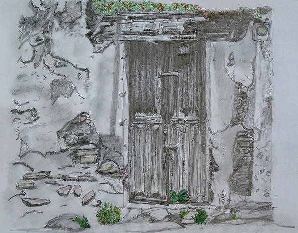 Weeds Drawing - Old Doors 3 by Maria Woithofer
