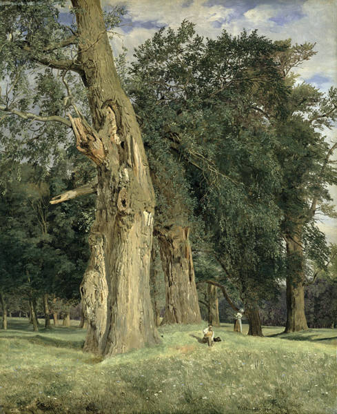 Gnarl Wall Art - Painting - Old Elms In Prater by Ferdinand Georg Waldmuller