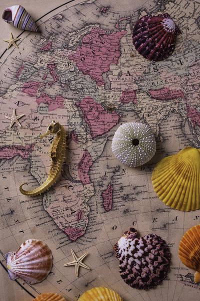 Wall Art - Photograph - Old Europe Map With Shells by Garry Gay