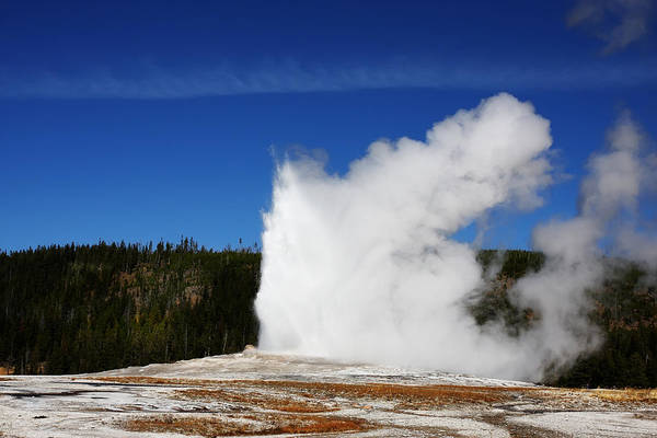 Photograph - Old Faithful by Mark Smith