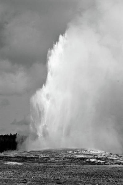 Wall Art - Photograph - Old Faithful by Melissa  Riggs