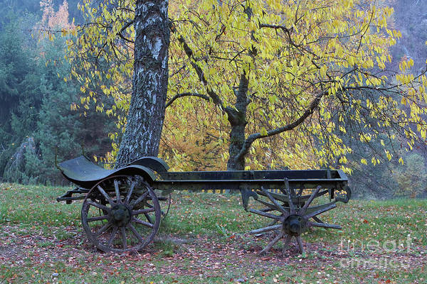 Wall Art - Photograph - Old Farm Carriage Under An Autumn Trees by Michal Boubin