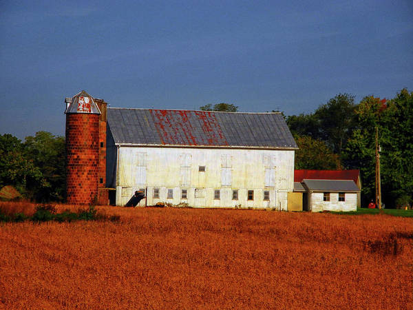 Photograph - Old Farm Pa At by Raymond Salani III
