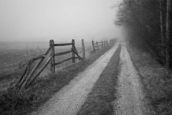 Photograph - Old Farm Road by David Gordon