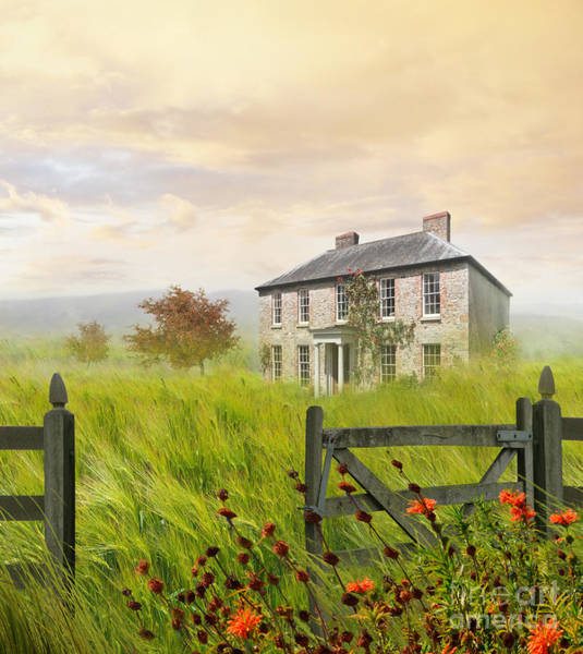 Photograph - Old Farmhouse In Wheat Field by Sandra Cunningham