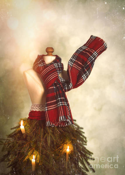 Dress Form Photograph - Old Fashioned Christmas Tree by Amanda Elwell