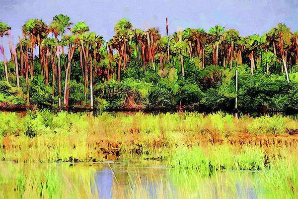 Photograph - Old Florida Loop Palms by Alice Gipson