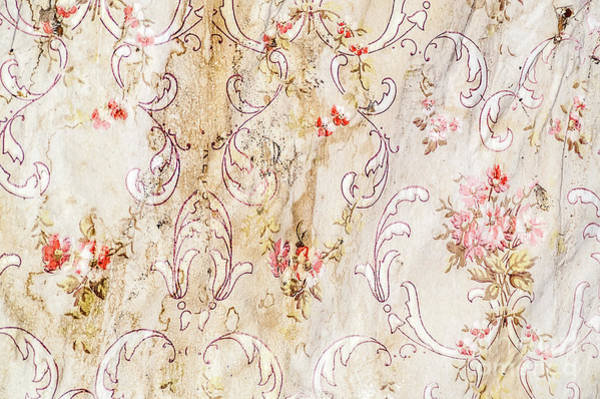 Photograph - Old Flowered Wallpaper by Sue Smith