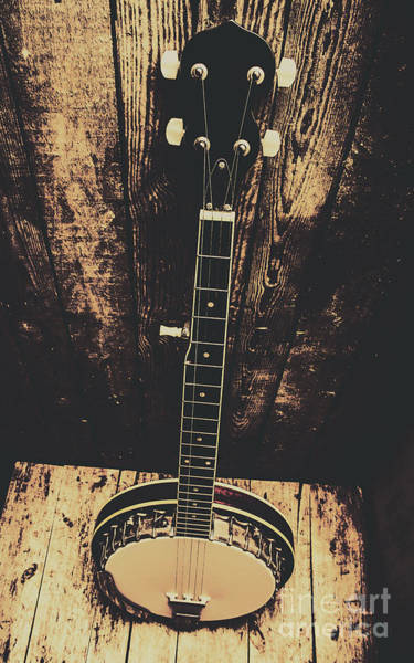 Length Photograph - Old Folk Music Banjo by Jorgo Photography - Wall Art Gallery