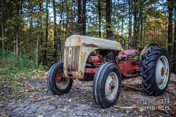 Photograph - Old Ford Vintage Tractor In The Woods by Edward Fielding
