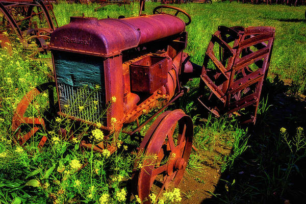 Traction Photograph - Old Fordson Tractor by Garry Gay