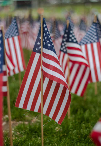 Photograph - Old Glory 2 by Brian MacLean