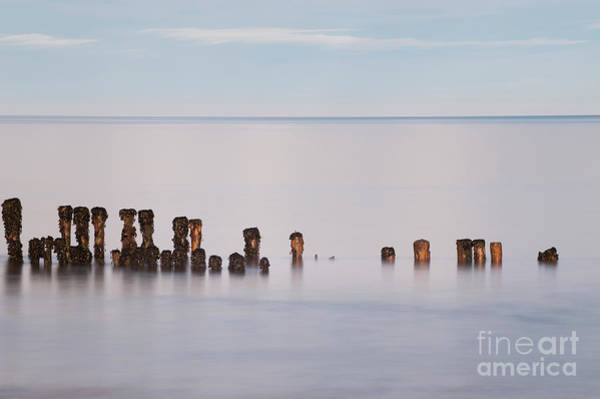 Photograph - Old Groyne by Anne Gilbert