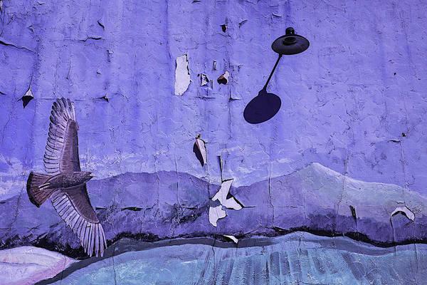 Peeling Paint Wall Art - Photograph - Old Hawk Mural by Garry Gay