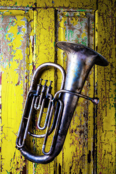 Wall Art - Photograph - Old Horn Hanging On Yellow Door by Garry Gay