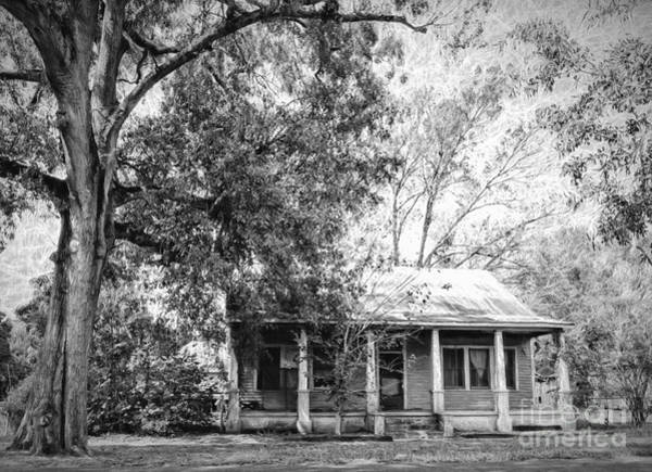 Baton Rouge Digital Art - Old House And Tree Donaldsonville La Art by Kathleen K Parker