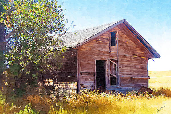 Photograph - Old House by Susan Kinney