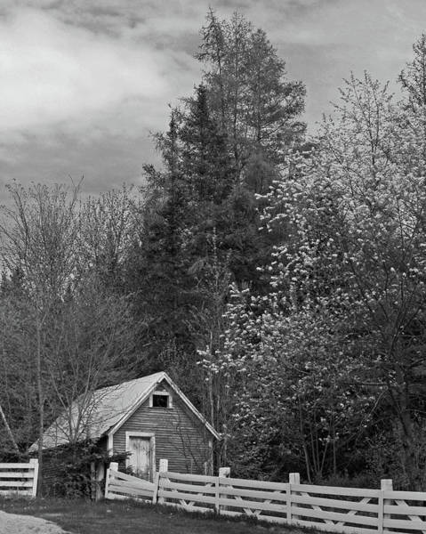Photograph - Old Ice House by Bill Barber