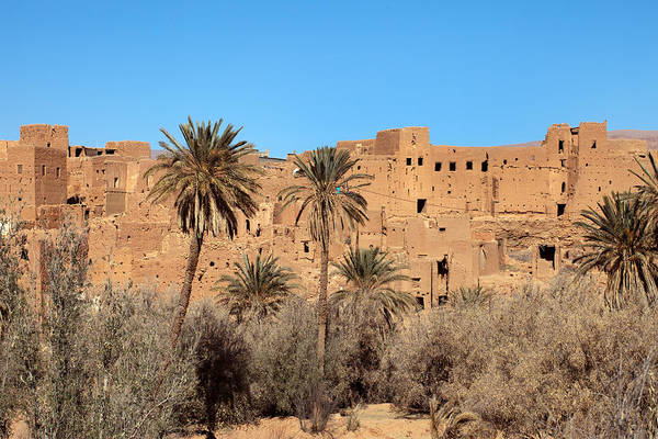 Photograph - Old Kasbah And Palms by Aivar Mikko