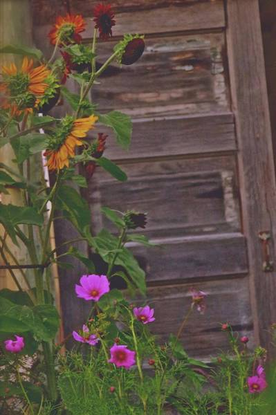 Photograph - Old Kitchen Door And A Cottage Garden by Amanda Smith