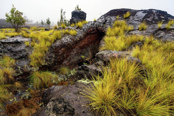 Photograph - Old Lava Flow by Christopher Johnson
