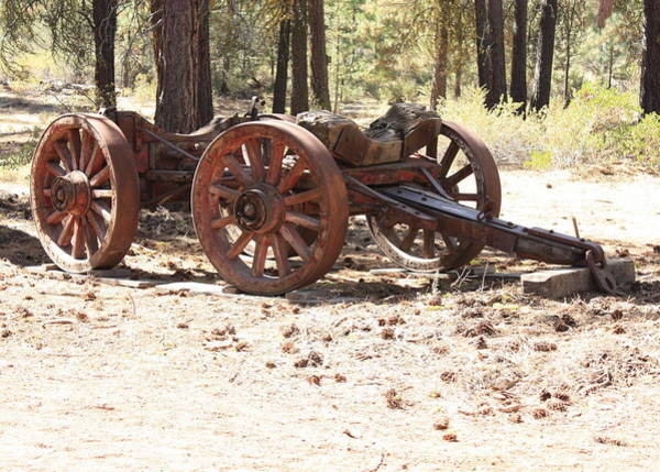 Photograph - Old Logging Wagon by Carol Groenen